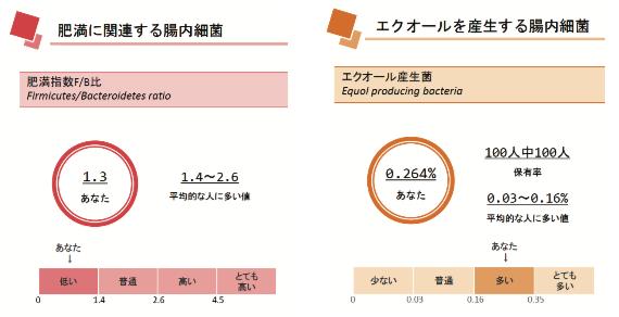 腸内細菌の割合と比較